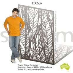Tucson screen design